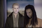 still twilight (14)