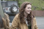 still twilight (36)