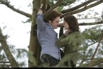 still twilight (86)
