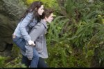 still twilight (96)